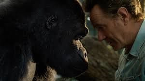 A Gorilla Never Forgets